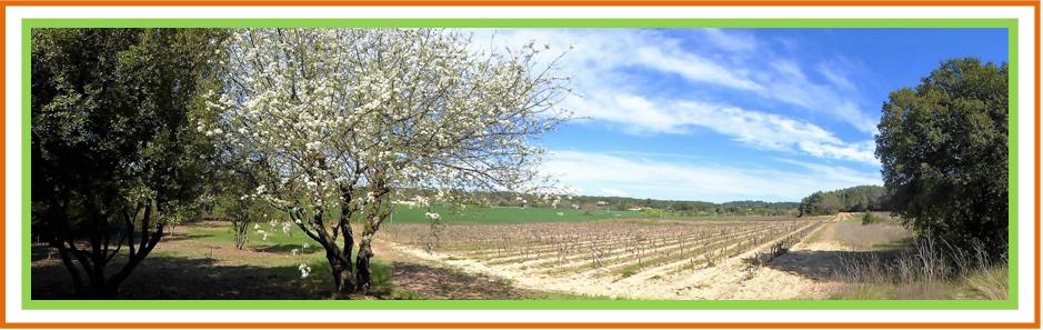 Ateliers d'écriture en Provence